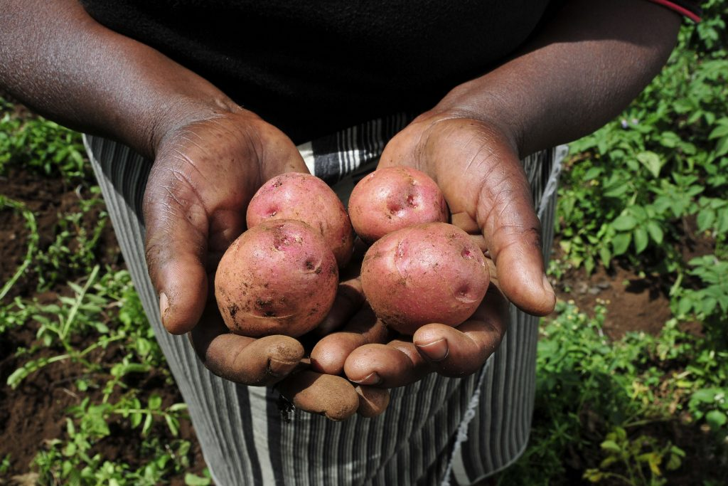Covid-19 hits East African agri value chains
