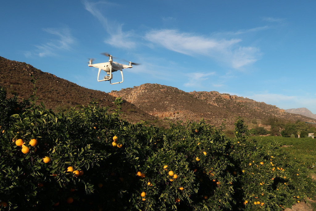 A drone hovers over farmland in South Africa's Citrusdal.
