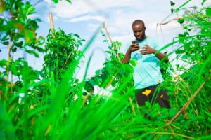 A young African farmer uses his mobile phone.